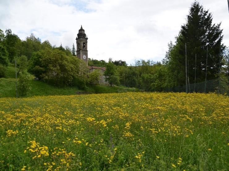 La chiesa di Lusignana, in lontananza